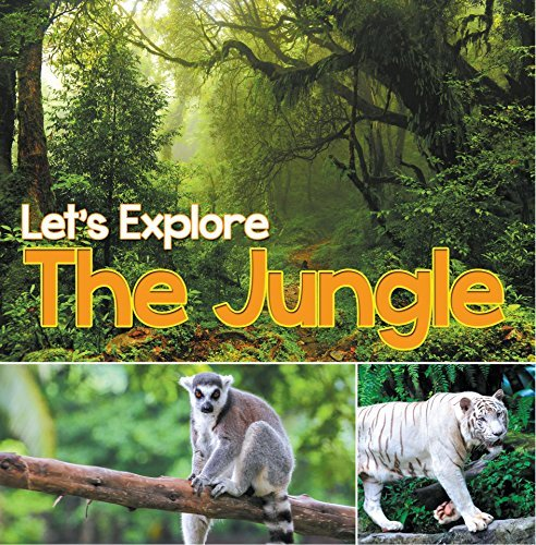 Let's Explore the Jungle: Wildlife Books for Kids