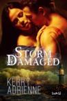 Storm Damaged by Kerry Adrienne
