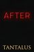 After (Damon & Pete: Playing with Fire, #2)