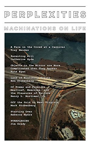 Perplexities: Machinations on Life