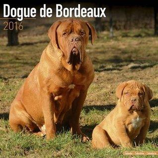 DOGUE DE BORDEAUX 2016 Wall Calendar