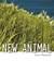 New Animal by Daniel Moysaenko