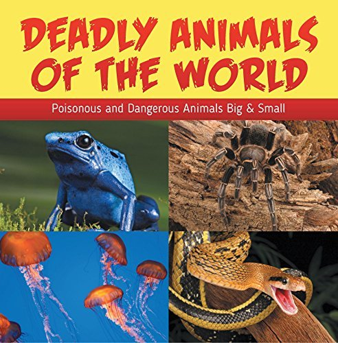 Deadly Animals Of The World: Poisonous and Dangerous Animals Big & Small: Wildlife Books for Kids (Children's Animal Books)