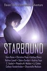 Starbound by S.M. Reine