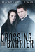 Crossing the Barrier (The Gray Eyes Series #1)