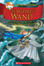 The Wizard's Wand (The Kingdom of Fantasy #9)