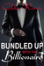 Bundled Up with the Billionaire by Chloe Raven