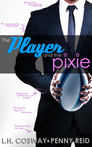The Player and the Pixie Book Cover