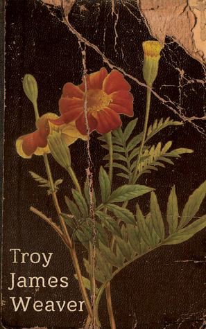 Marigold by Troy James Weaver