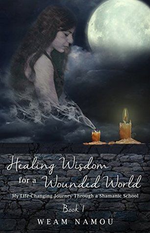 Healing Wisdom for a Wounded World: My Life-Changing Journey Through a Shamanic School: Book 1