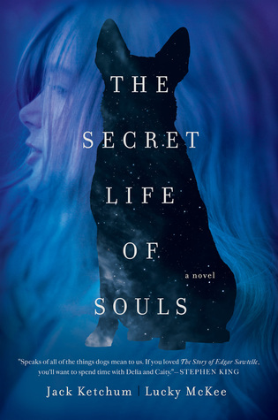 https://www.goodreads.com/book/show/28943765-the-secret-life-of-souls?ac=1&from_search=true