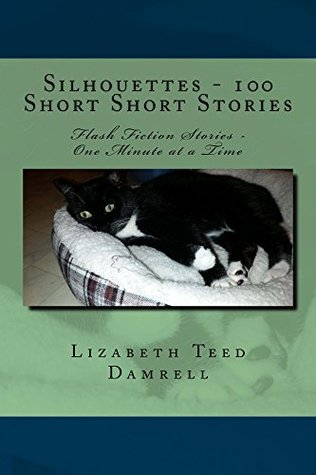 Silhouettes - 100 Short Short Stories: Flash Fiction Stories - One Minute at a Time