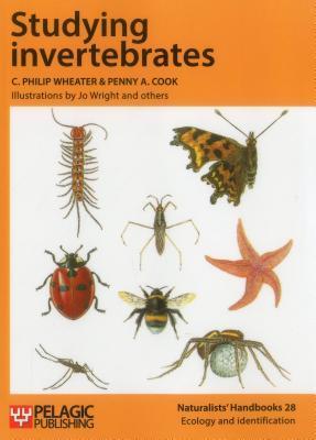 studying-invertebrates