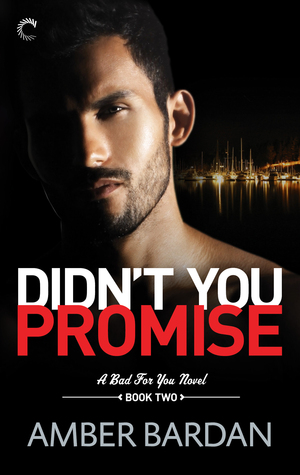 Didn't You Promise? by Amber A. Bardan
