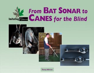 From Bat Sonar to Canes for the Blind