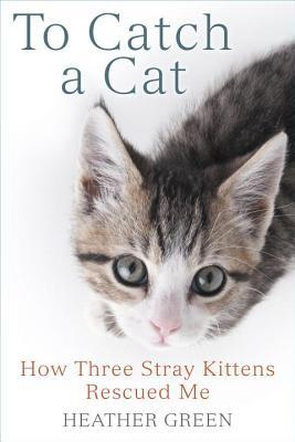 To Catch a Cat: How Three Stray Kittens Rescued Me