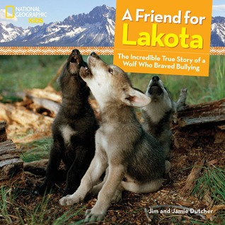 A Friend For Lakota By Jim Dutcher
