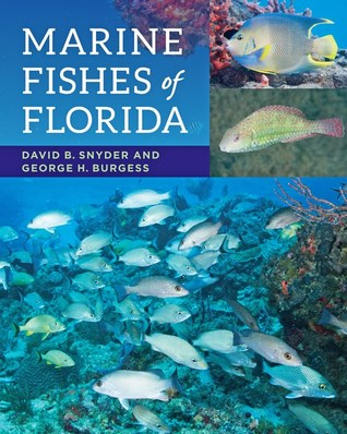 Marine Fishes of Florida by David B Snyder