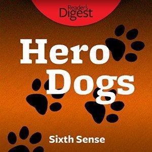 Hero Dogs: Sixth Sense