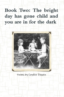 book-two-the-bright-day-has-gone-child-and-you-are-in-for-the-dark