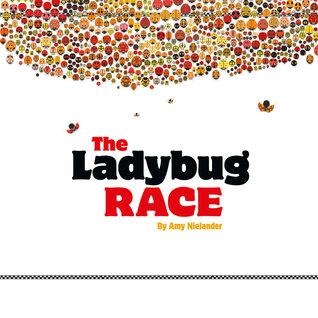 the-ladybug-race