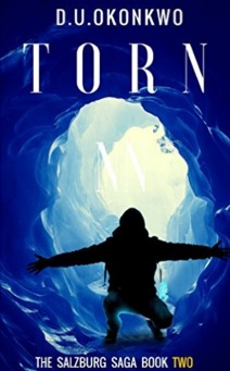 Torn by D.U. Okonkwo