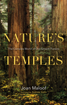 Nature S Temples The Complex World Of Old Growth Forest