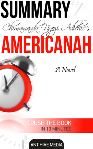 Chimamanda Ngozi's Americanah Summary