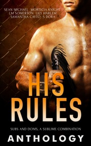 His Rules Anthology