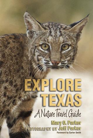 explore-texas-a-nature-travel-guide