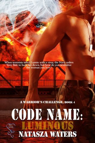 Code Name (A Warriors Challenge, #4)
