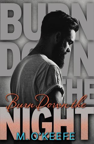 Burn Down the Night Book Cover