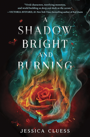 A Shadow Bright and Burning (Kingdom on Fire, #1)