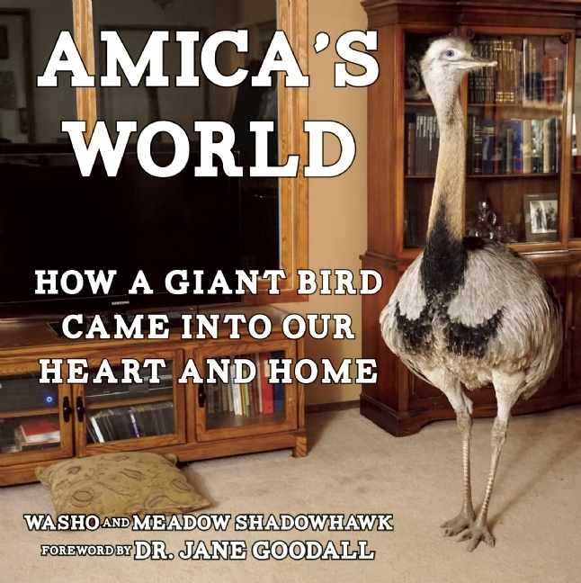 Amica's World: How a Giant Bird Came Into Our Heart and Home