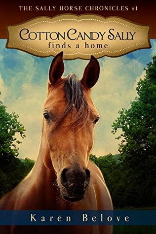 Cotton Candy Sally Finds a Home (The Sally Horse Chronicles #1)