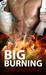 Big Burning (Sasquatch Susies, #3)