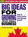 Big ideas for growing your small business: How to build profits and manage growth