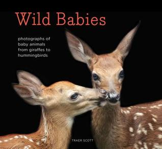 Wild Babies: Photographs of Animals in Their First Weeks of Life