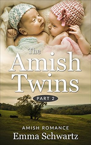 The Amish Twins, Part 2