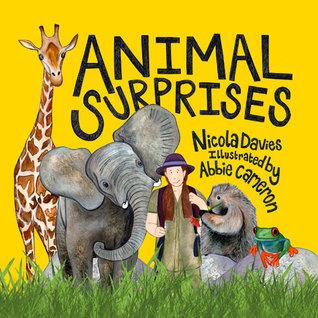 Animal Surprises