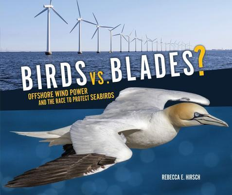 Birds vs. Blades: Offshore Wind Power and the Race to Save Seabirds