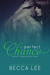 A Perfect Chance (Perfect, #3)
