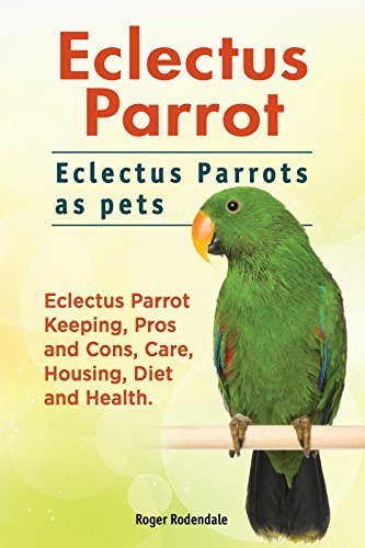 Eclectus Parrots. Eclectus Parrot care, keeping, pros and cons, housing, diet and health. Eclectus Parrot Owners Manual.