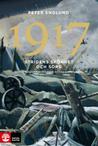 Stridens skönhet och sorg 1917: första världskrigets fjärde år i 108 korta kapitel (Stridens skönhet och sorg, #4)