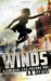 Winds by A.B. Dantas