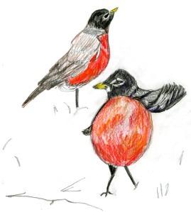 Libros en línea ebooks descargas gratuitas Bird-Watcher's Diary Entries: An Illustrated Chapbook Jane Beal