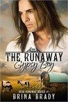 The Runaway Gypsy Boy by Brina Brady