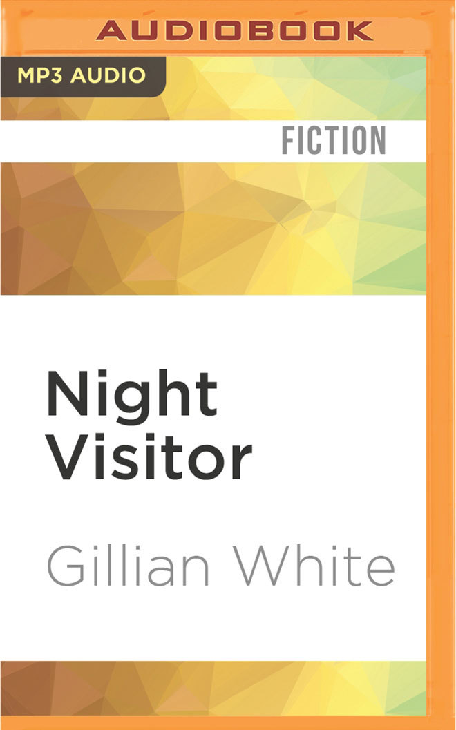 Night Visitor: A Novel