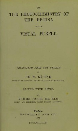 On the Photochemistry of the Retina: And on Visual Purple