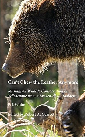 Can't Chew the Leather Anymore: Musings on Wildlife Conservation in Yellowstone from a Broken-down Biologist